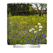 Fenceline Wildflowers Shower Curtain