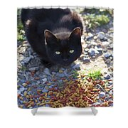 Feral Learning Trust Shower Curtain