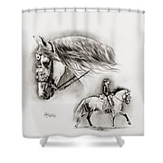 Feria Shower Curtain