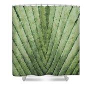 Fern - Chalk Shower Curtain