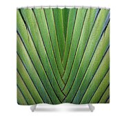 Fern - Colored Photo 1 Shower Curtain