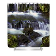 Fern Falls - 31 Shower Curtain