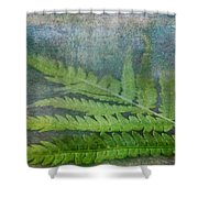 Fern Shower Curtain by Garvin Hunter