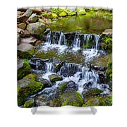 Fern Spring In Spring In Yosemite Np-2013 Shower Curtain
