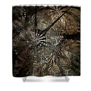 Ferns 437-08-13 Marucii Shower Curtain