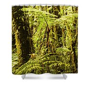 Ferns And Moss Shower Curtain