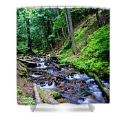 Ferns Dancing By The Creek Shower Curtain