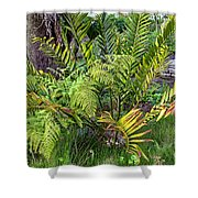 Ferns II Shower Curtain