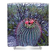 Ferocactus Wislizenii Shower Curtain