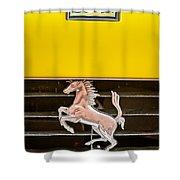 Ferrari Dino Grille Emblem -0750c Shower Curtain