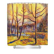 Ferrum Sketch Shower Curtain