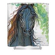 Ferryt Polish Black Arabian Horse Shower Curtain
