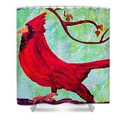 Festive Cardinal Shower Curtain
