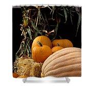 Festive Fall Shower Curtain