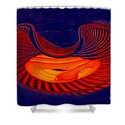 Fetal Light Form Shower Curtain