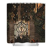 Feu D Artifice Shower Curtain