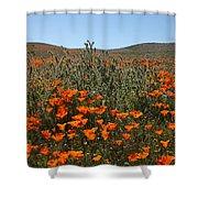 Fiddlenecks And Poppies Shower Curtain