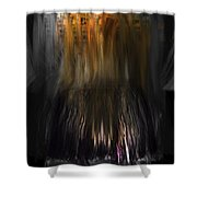 Fidty Shades Of Decay 4.0 Shower Curtain