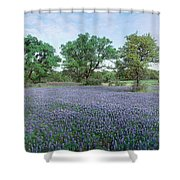Field Of Bluebonnet Flowers, Texas, Usa Shower Curtain