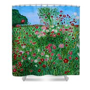 Field Of Cosmos Shower Curtain