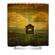 Field Of Dandelions Shower Curtain