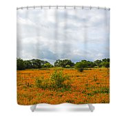 Field Ablaze Shower Curtain
