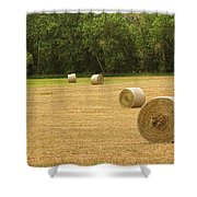 Field Of Freshly Baled Round Hay Bales Shower Curtain
