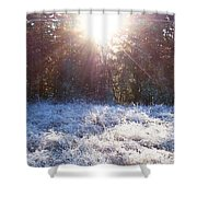 Field Of Frost Shower Curtain