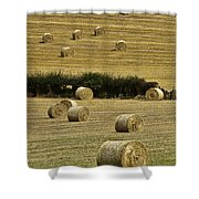 Field Of Hay Bales Shower Curtain