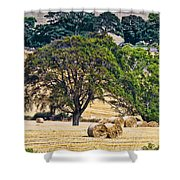 Field Of Hay Shower Curtain