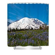 Field Of Lupines And Rainier Shower Curtain