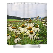 Field Of Medicine Perspective Shower Curtain