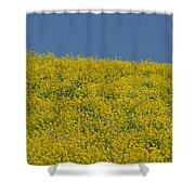 Field Of Mustard Shower Curtain