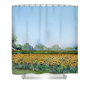 Field Of Sunshine Shower Curtain