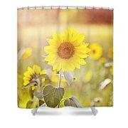 Field Of Sunshine Shower Curtain