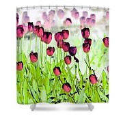 Field Of Tulips - Photopower 1492 Shower Curtain