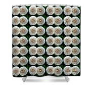 Field Of Wishes Shower Curtain