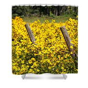 Field Of Yellow Shower Curtain