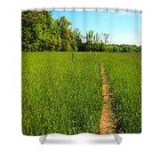 Field Path Shower Curtain