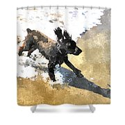 Field Spaniel Joy Shower Curtain