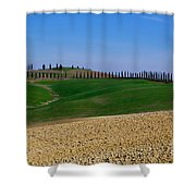 Field With Cypress Trees Shower Curtain