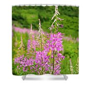 Fields Of Fireweed Shower Curtain