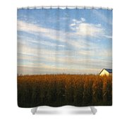 Fields Of Gold - Digital Painting Effect Shower Curtain