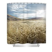 Fields Of Grass In Nevada Desert Shower Curtain