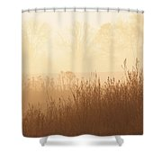 Fields Of Tall Grass In The Mist Shower Curtain