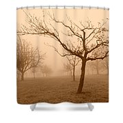 Fields Of Trees Shower Curtain