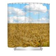 Fields Of Wheat Shower Curtain