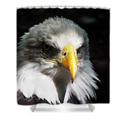 Fierce Pride Shower Curtain