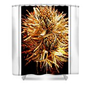 Fiery Floral Shower Curtain