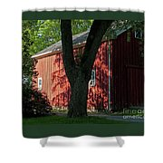 Fiery Shadows Shower Curtain